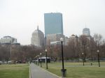 Boston common, April 2008